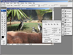 Photoshop CS2 & CS3 DVD training set